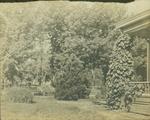 Henry Hospers Home & Yard by Hospers Family