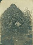 Henry Hospers Gardener, Westra, amid Grape Vines by Hospers Family