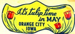 Tulip Festival Advertisement
