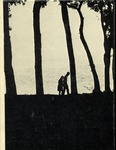 1970 De Klompen